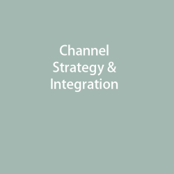 Channel Strategy & Integration